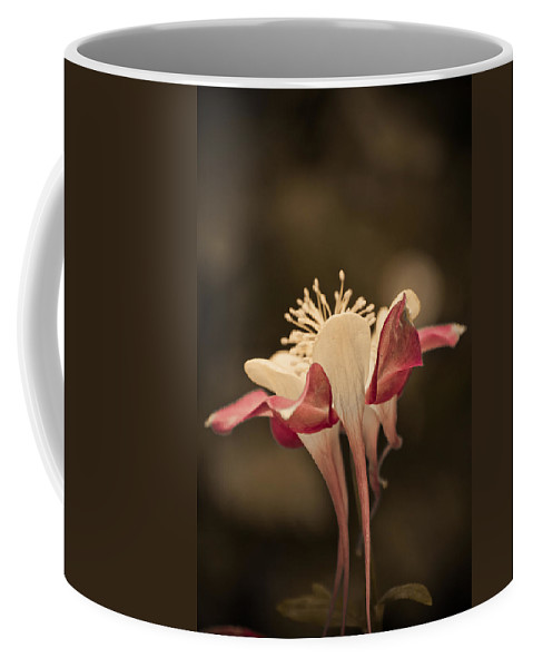 Flower Coffee Mug featuring the photograph What The Heck by Trish Tritz