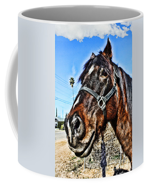 Horse Coffee Mug featuring the photograph What You Looking At by Tommy Anderson