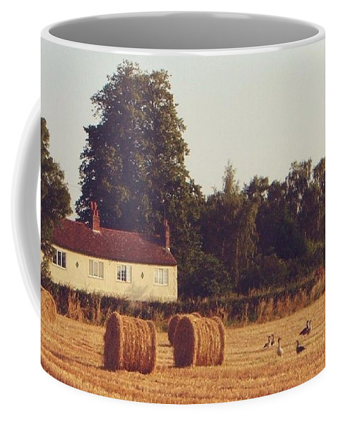 Lincoln Coffee Mug featuring the painting Wheat Field And Geese At Harvest by John Clark