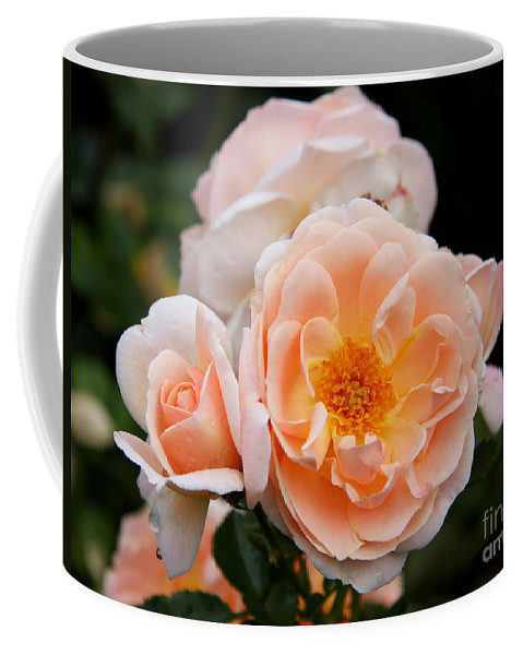 Rose Coffee Mug featuring the photograph Wheeping Rose by Christiane Schulze Art And Photography