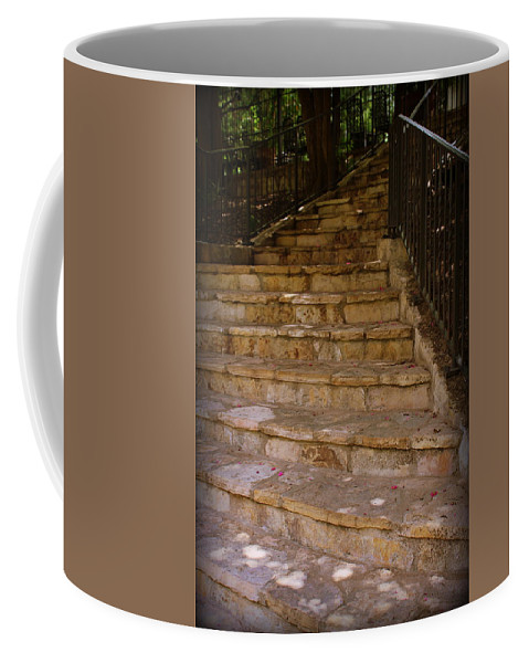 Stone Coffee Mug featuring the photograph Where Will It Lead..... by Beth Vincent