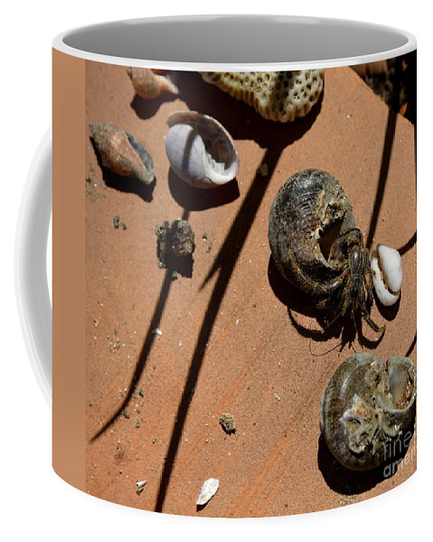 What Is My Coffee Mug featuring the photograph Which Is My by Galina Khlupina