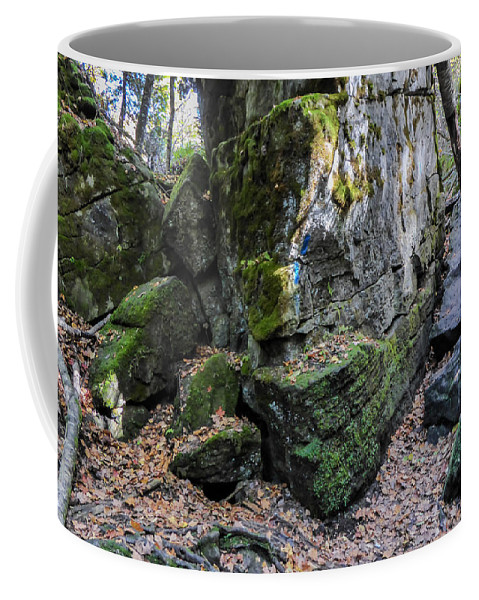 Landscape Coffee Mug featuring the photograph Which Way To Go by Richard Kitchen