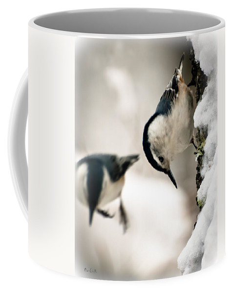 Nuthatch Coffee Mug featuring the photograph White Breasted Nuthatch In The Snow by Bob Orsillo