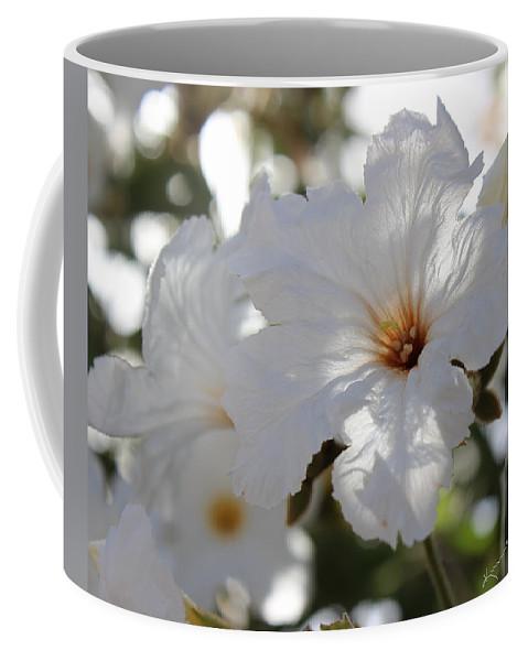 Cordia Boissieri Coffee Mug featuring the photograph White Cordia by Kume Bryant