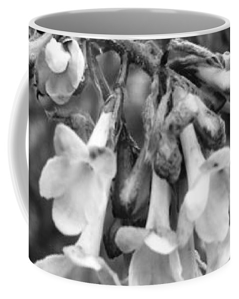 Flower Coffee Mug featuring the photograph White Darkness by Image-in Photoart