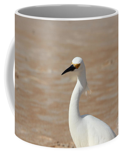Egret Coffee Mug featuring the photograph White Egret by Jackie Mestrom