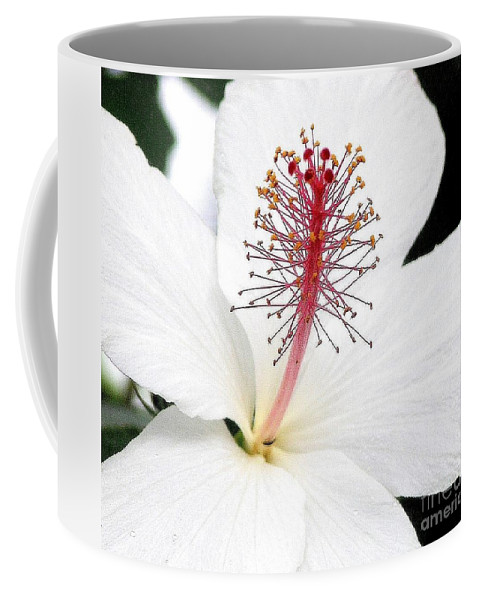 White Hibiscus Flower Coffee Mug featuring the photograph White Hibiscus by Mary Deal