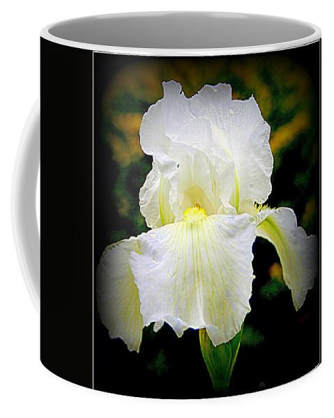 White Iris Coffee Mug featuring the photograph White Iris by Kay Novy