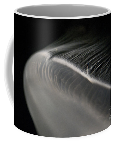 Jellyfish Coffee Mug featuring the photograph White Jellyfish by Diego Re