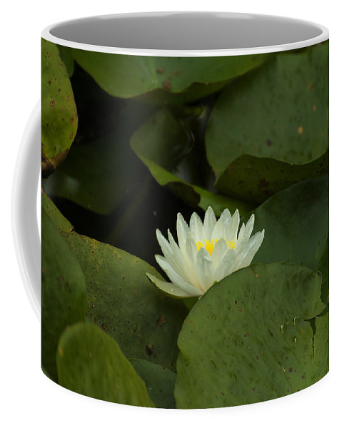 Lily Coffee Mug featuring the digital art White Lilly by Chris Flees