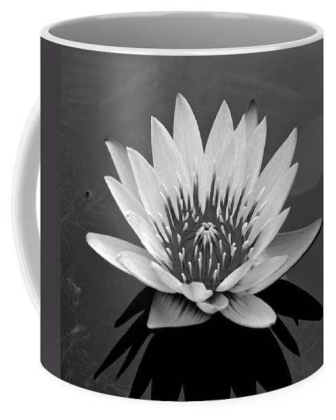 White Flower Photograph Coffee Mug featuring the photograph White Lotus Flower by Kristina Deane