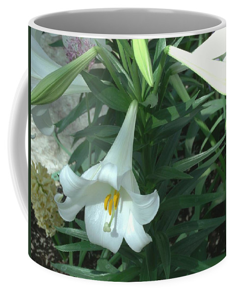 Flower Coffee Mug featuring the photograph White Lovely by Jared Best