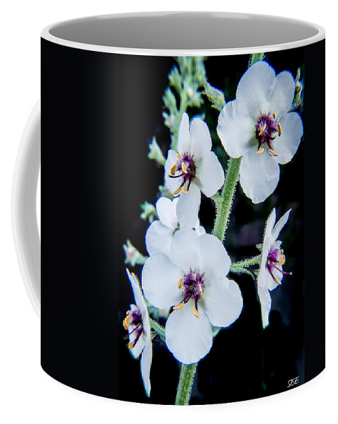 Flower Coffee Mug featuring the photograph White On Black by Susan Eileen Evans
