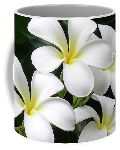 Hawaii Iphone Cases Coffee Mug featuring the photograph White Plumeria by James Temple