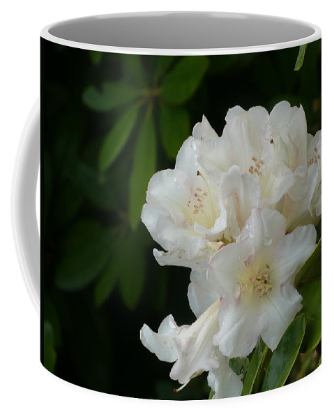 Water Coffee Mug featuring the photograph White Rhododendron With Tears by Nicki Bennett