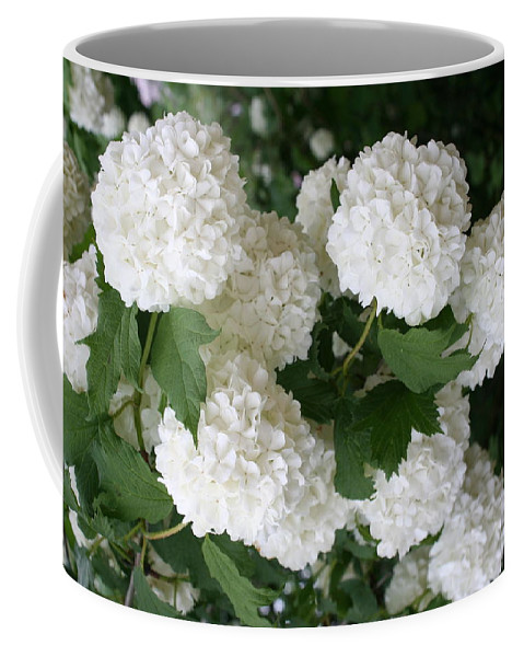 White Snowball Coffee Mug featuring the photograph White Snowball Bush by Christiane Schulze Art And Photography
