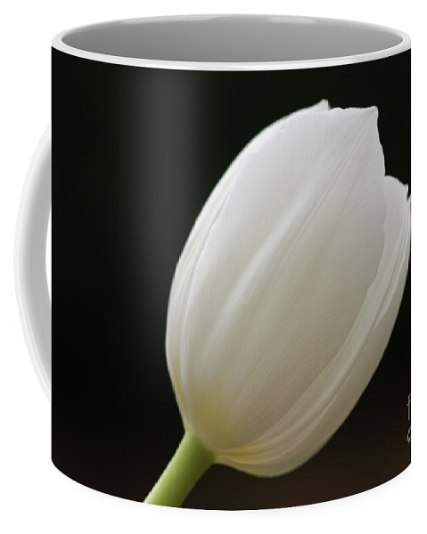 White Coffee Mug featuring the photograph White Tulip 1 by Carol Lynch