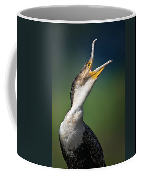 Cormorant Coffee Mug featuring the photograph Whitebreasted Cormorant by Johan Swanepoel