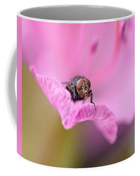 Fly Coffee Mug featuring the photograph Who Are You by Susan Capuano