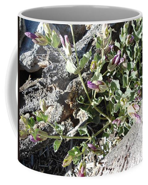 Wild Flowers Coffee Mug featuring the photograph Wild Flowers 1 by Lovina Wright