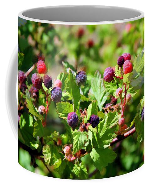Wild Blackberries On The Mogollon Rim In Northeastern Arizona. Coffee Mug featuring the digital art Wild Mountain Berries by Carolyn Krek