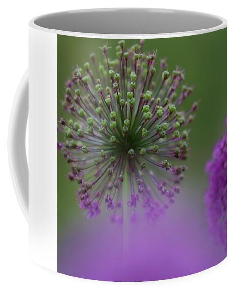 Allium Coffee Mug featuring the photograph Wild Onion by Heiko Koehrer-Wagner