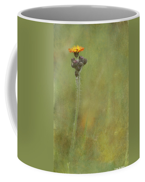 Flower Coffee Mug featuring the photograph Wildflower by Fran Gallogly