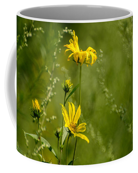Floral Coffee Mug featuring the photograph Wildflowers by Robert Mitchell
