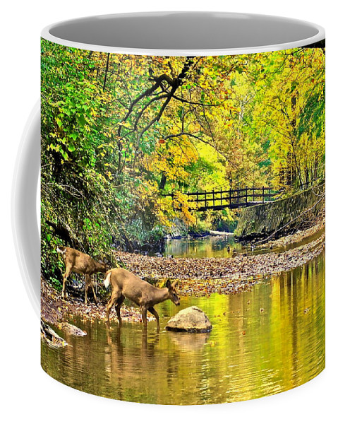 Wildlife Coffee Mug featuring the photograph Wildlifes Thirst by Frozen in Time Fine Art Photography