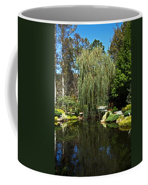 Willow Tree Coffee Mug featuring the photograph Willow by David Campbell