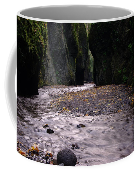Oregon Coffee Mug featuring the photograph Winding Through Oneonta Gorge by Jeff Swan