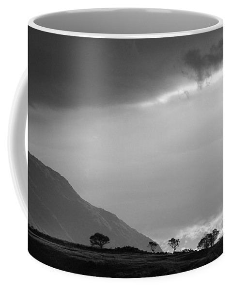 Windswept Coffee Mug featuring the photograph Windswept by Wendy Wilton