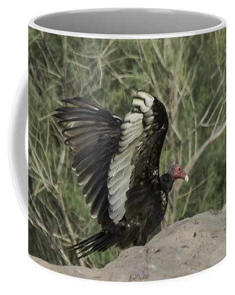 Vulture Coffee Mug featuring the photograph Wings Up by Lorraine Harrington