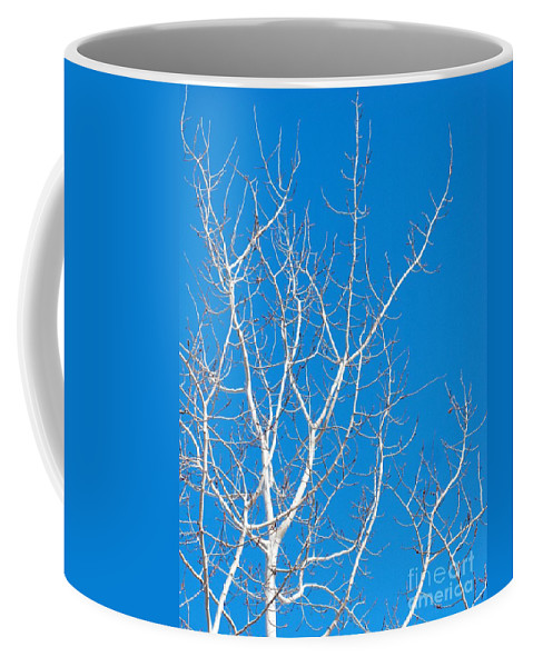 Winter Coffee Mug featuring the photograph Winter by Ann Horn