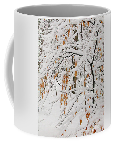 Winter Coffee Mug featuring the photograph Winter Branches by Ann Horn