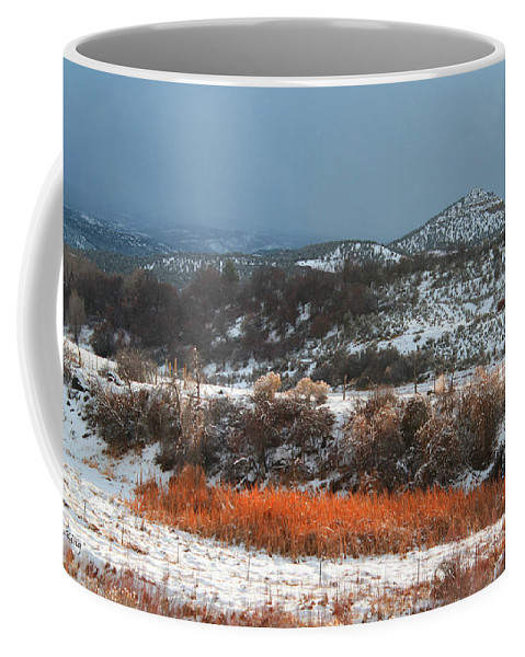 Roena King Coffee Mug featuring the photograph Winter Colors 3 by Roena King