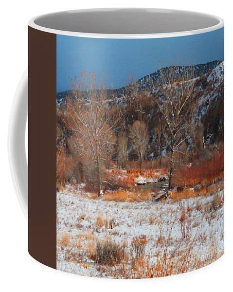 Roena King Coffee Mug featuring the photograph Winter Colors by Roena King