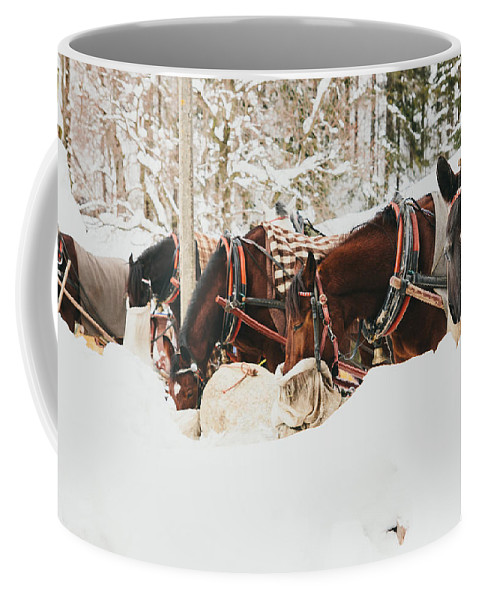 Horses Coffee Mug featuring the photograph Horses Eating In Snow by Pati Photography