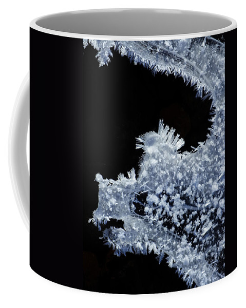 Frost Fairies Coffee Mug featuring the photograph Winter Dragon by Bill Morgenstern
