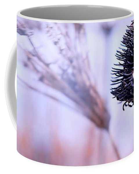 Flowers Coffee Mug featuring the photograph Winter Flowers by Bob Orsillo