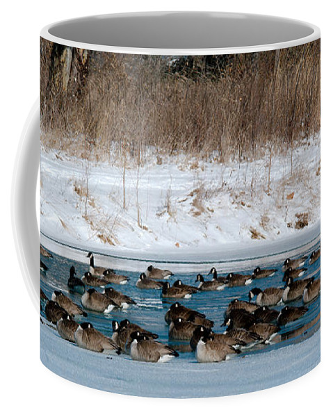 Winter Coffee Mug featuring the photograph Winter Geese - 02 by Larry Jost