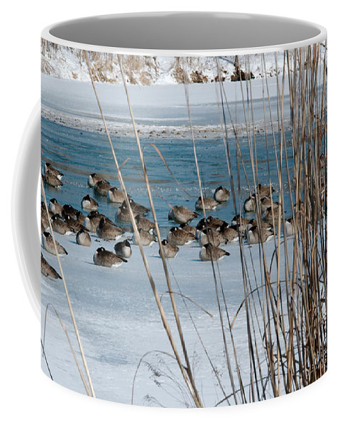 Winter Coffee Mug featuring the photograph Winter Geese - 04 by Larry Jost