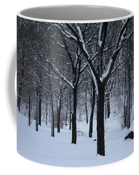 Winter Coffee Mug featuring the photograph Winter In The Park by Dora Sofia Caputo Photographic Design and Fine Art
