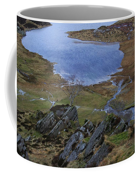 Landscape Coffee Mug featuring the photograph Winter Landscape Detail North Wales by Mo Barton
