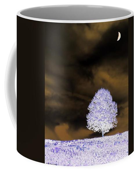Winter Coffee Mug featuring the photograph Winter Night by Tara Potts