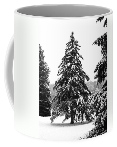 Winter Coffee Mug featuring the photograph Winter Pines by Ann Horn