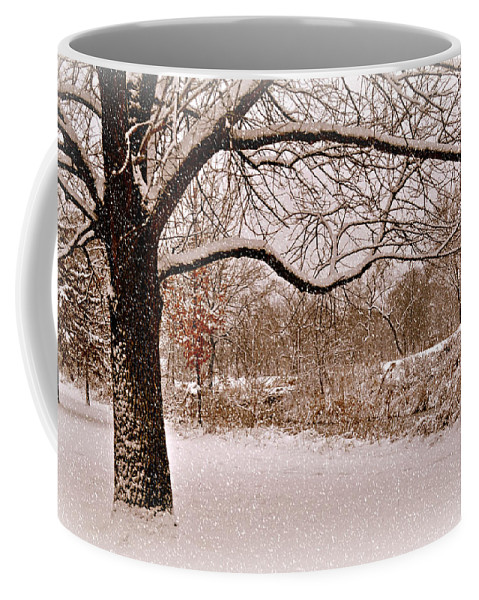 Winter Coffee Mug featuring the photograph Winter Scene by Marty Koch