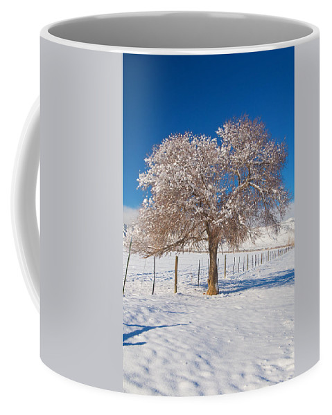 Tree Coffee Mug featuring the photograph Winter Season On The Plains Portrait by James BO Insogna