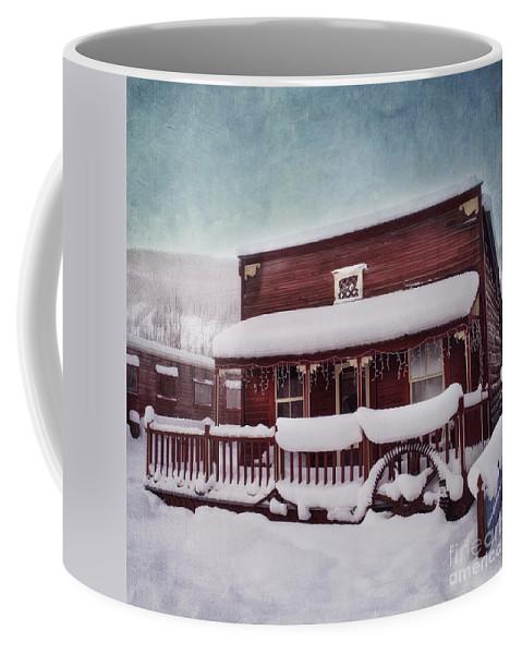 House Coffee Mug featuring the photograph Winter Sleep by Priska Wettstein